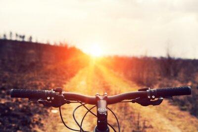 Carta da parati Mountain bike in discesa scendendo veloce in bicicletta. Vista da