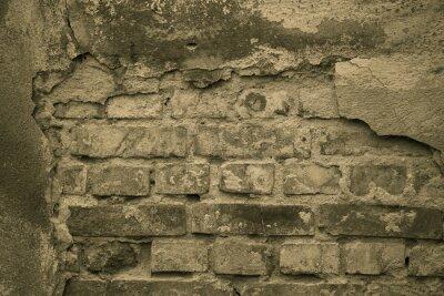 Carta da parati mur Stary