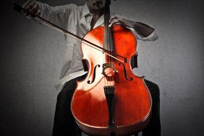 Carta da parati Musicista che suona un violoncello