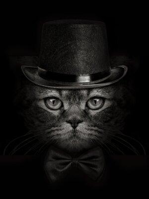 Carta da parati muso scuro gatto primo piano in un cappello e cravatta a farfalla