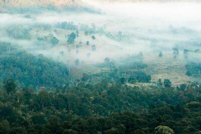 Carta da parati Nebbia in Valle