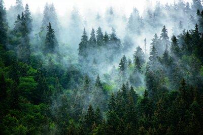 Carta da parati Nebbioso paesaggio montano