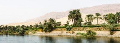 Carta da parati Nile shore in nature