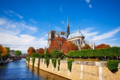Carta da parati Notre Dame de Paris, lungo la Senna