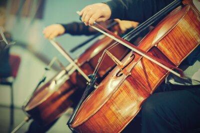 Carta da parati Orchestra sinfonica sul palco, mani suonare il violoncello