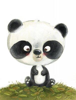 Carta da parati oso panda pequeño