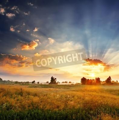 Carta da parati Paesaggio, Alba di sole in un campo