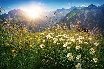 Carta da parati Paesaggio delle montagne in Vorarlberg