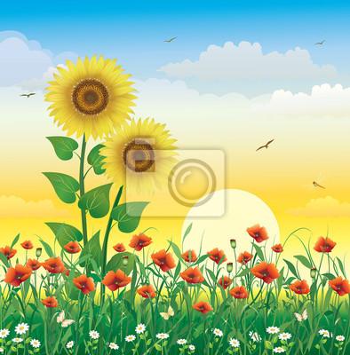 Paesaggio floreale con i papaveri e girasoli allalba carta da parati ...