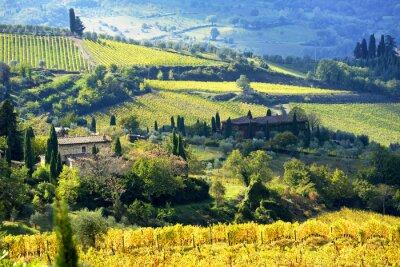 Carta da parati Paesaggio in Chianti, Toscana, Italia