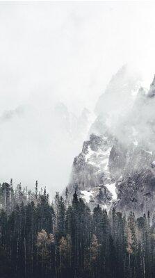 Carta da parati paesaggio nebbioso in tatry