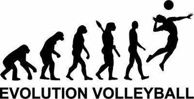 Carta da parati Pallavolo Evolution