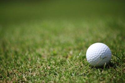 Carta da parati pallina da golf in erba