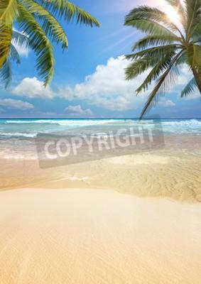 Carta da parati Palm beach