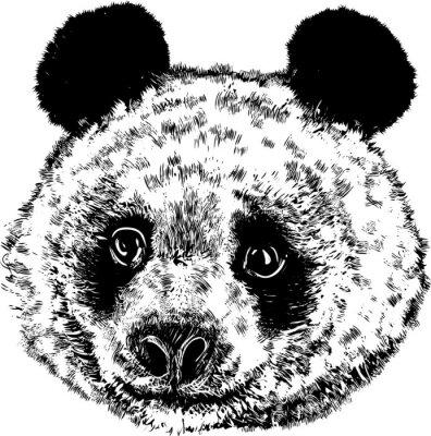 Carta da parati Panda 01