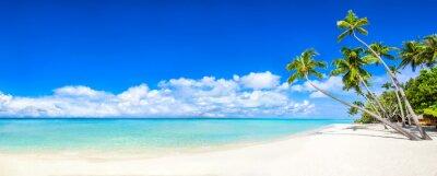 Carta da parati Panorama sulla spiaggia con mare e palme