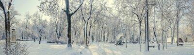 Carta da parati Parco pubblico dall'Europa con alberi e rami coperti di neve e ghiaccio, panchine, palo della luce, paesaggio.