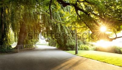 Carta da parati Passeggiata in uno splendido parco cittadino
