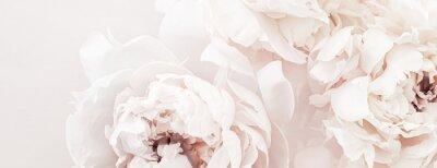 Carta da parati Pastel peony flowers in bloom as floral art background, wedding decor and luxury branding design