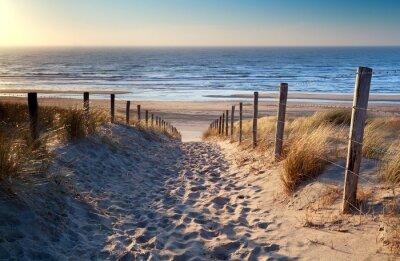 Carta da parati percorso verso nord spiaggia del mare sotto il sole d'oro