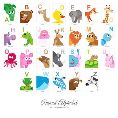 Carta da parati Piatto Alfabeto degli animali