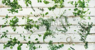 Carta da parati Piatto-lay di varie erbe verdi fresche. Prezzemolo, menta, aneto, coriandolo, rosmarino, timo su fondo rustico in legno bianco, vista dall'alto, ampia composizione. Concetto di cottura vegano sano
