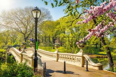 Carta da parati Pieghi il ponte in Central Park al giorno soleggiato della molla, New York