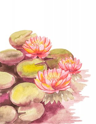 Carta da parati Pink lotuses with brown-green leaves, top right blank background for an inscription, watercolor handwork.