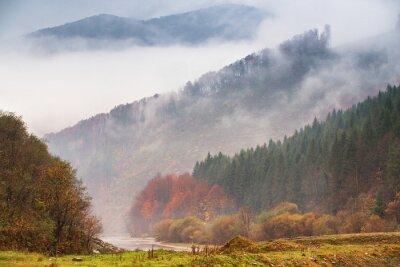 Carta da parati Pioggia autunnale e nebbia in montagna. Sfondo colorato di foresta autunnale