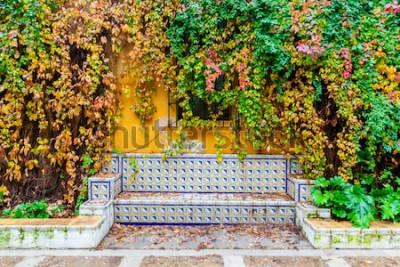 Carta da parati pittoresca foto di una panchina con piastrelle tradizionali di fronte a un muro rivestito di vite