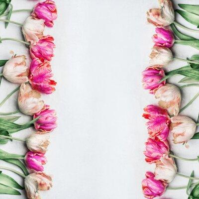 Carta da parati Piuttosto tulipani di colore pastello con gocce d'acqua, cornice floreale, vista superiore. Fiori di primavera concetto