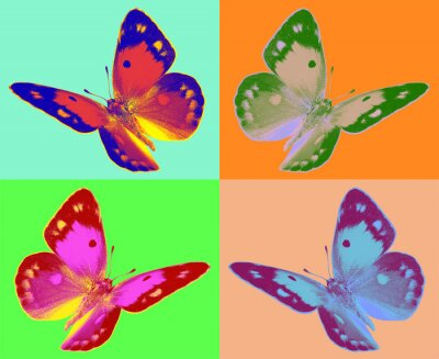 Carta da parati pop art Colias farfalla