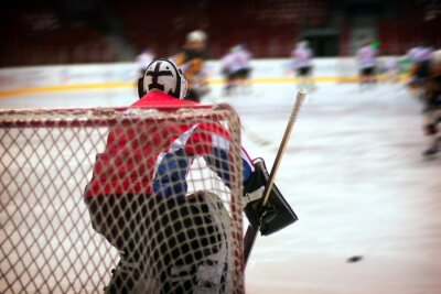 Carta da parati portiere per hockey