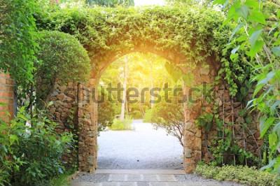 Carta da parati Portone dell'entrata dell'arco di pietra coperto di edera. Arco al parco con la luce solare.