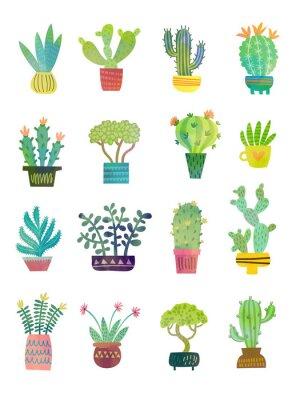 Carta da parati poster dell'acquerello di cactus