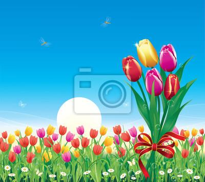 Prato di fiori con tulipani nel sole e cielo blu di sfondo carta da ...