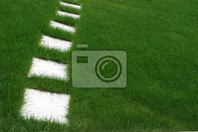 Prato verde con mattonelle carta da parati u carte da parati erba