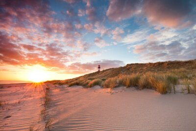 Carta da parati Primavera mattina sull'isola di Sylt Wadden Sea