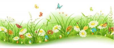 Carta da parati Primavera o estate floreale banner con erba verde, fiori e farfalle