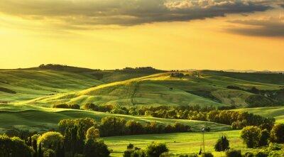 Carta da parati primavera Toscana, colline sul tramonto. Paesaggio rurale. verde
