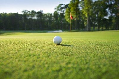 Carta da parati Primo piano di pallina da golf sul green