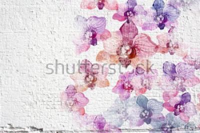 Carta da parati Priorità bassa astratta dello stucco della parete del grunge bianco. Struttura dello stucco della parete con l'orchidea colorata dei fiori dell'acquerello.