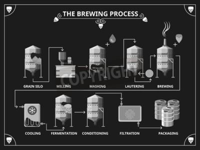 Carta da parati processo di fermentazione della birra. Vector birra di produzione infografica. Ordinare schiacciare lautering illustrazione prodotto