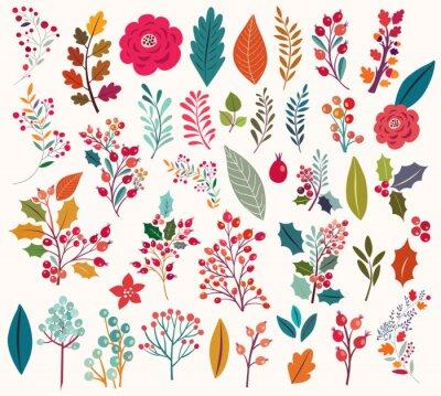 Carta da parati Raccolta di fiori e foglie