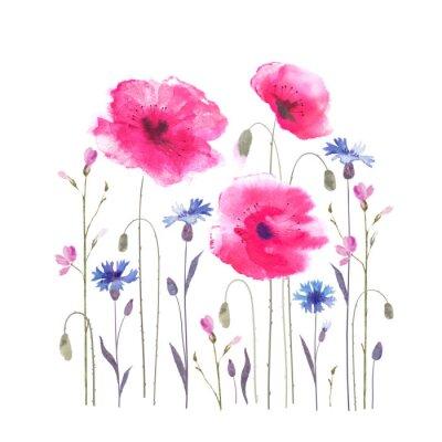 Carta da parati Radura floreale con papaveri e fiordalisi.