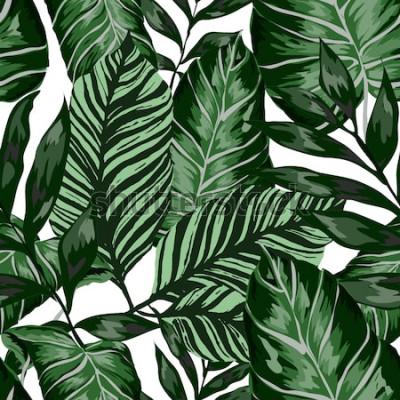 Carta da parati Reticolo senza giunte dell'acquerello con foglie tropicali: palme, monstera, frutto della passione. Bellissima stampa allover con piante esotiche disegnate a mano. Costumi da bagno design botanico