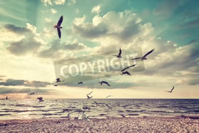 Carta da parati Retro spiaggia stilizzata con uccelli volanti al tramonto.
