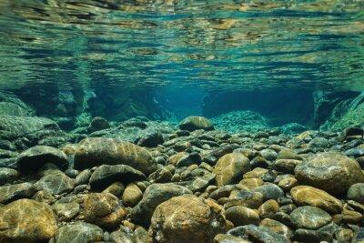 Carta da parati Rocce sottomarine sul letto del fiume con acqua dolce chiara, fiume Dumbea, Grande Terre, Nuova Caledonia