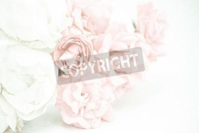 Carta da parati Rose colorate dolci in morbido e sfocato stile sulla trama di gelso