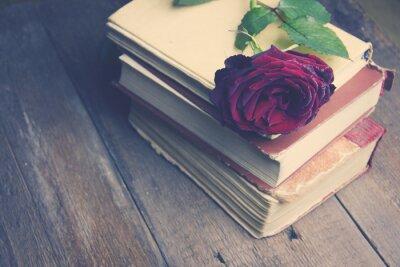 Carta da parati rose sui libri